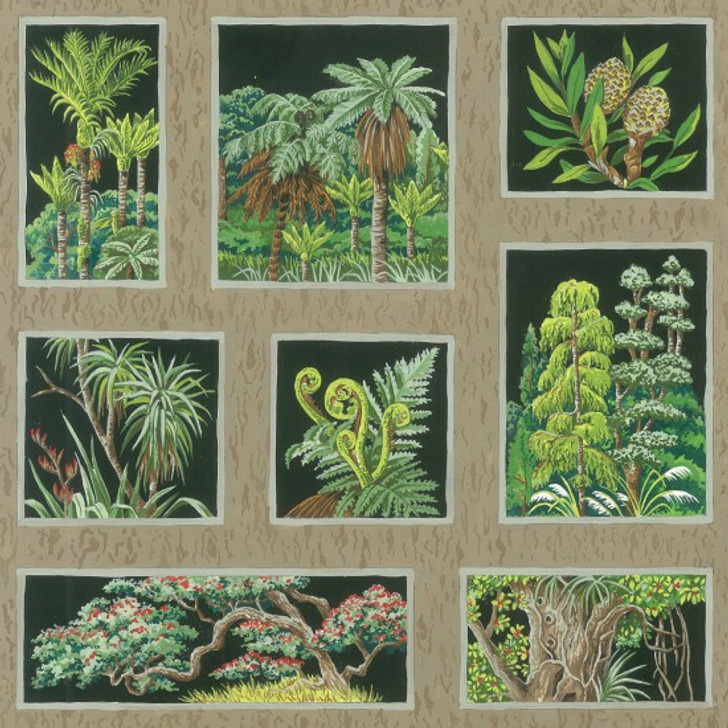 New Zealand Ferns Trees Botany Blocks Black Cotton Quilting Fabric 1/2 YARD