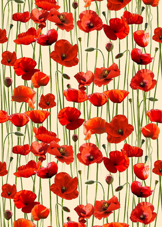 Anzac Day Remembering Day Red Poppies Cream Background Cotton Quilting Fabric 1/2 YARD