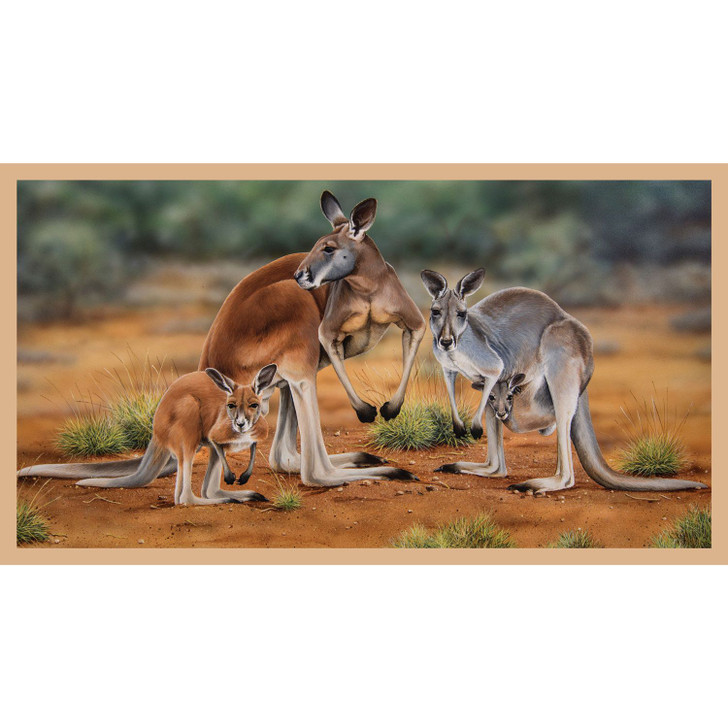 Australian Wildlife Art 3 Kangaroos Cotton Quilting Fabric Panel