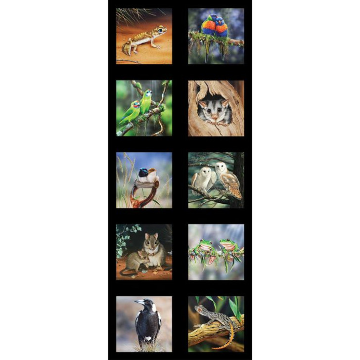 Australian Wildlife Art 5 Magpies Frogs Owls Cotton Quilting Fabric Small Panel