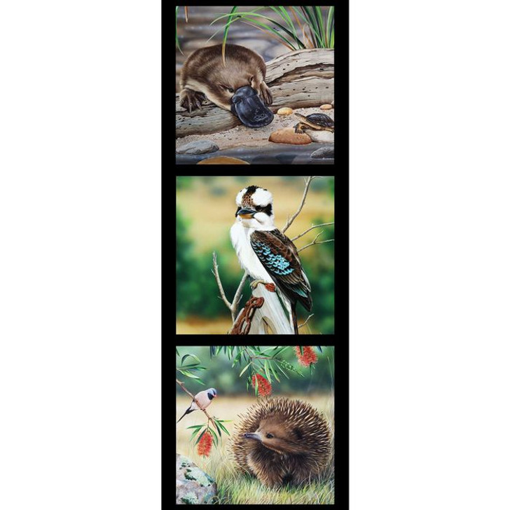 Australian Wildlife Art 5 Platypus Kookaburra Echidna Cotton Quilting Fabric Small Panel