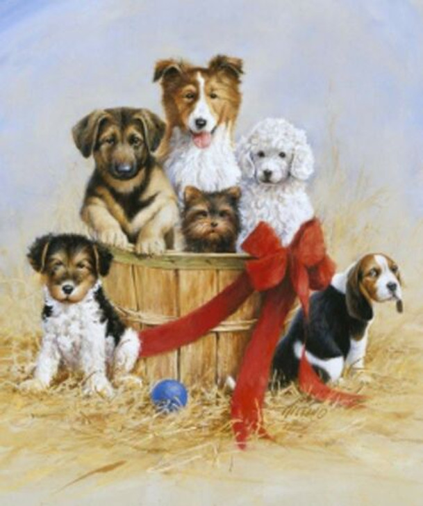 Puppies Wild and Free Penny Rose Cotton Quilting Fabric Panel