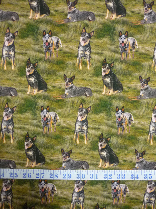 Merino Muster Sheep Dog Blue Heeler Green Background Cotton Quilting Fabric