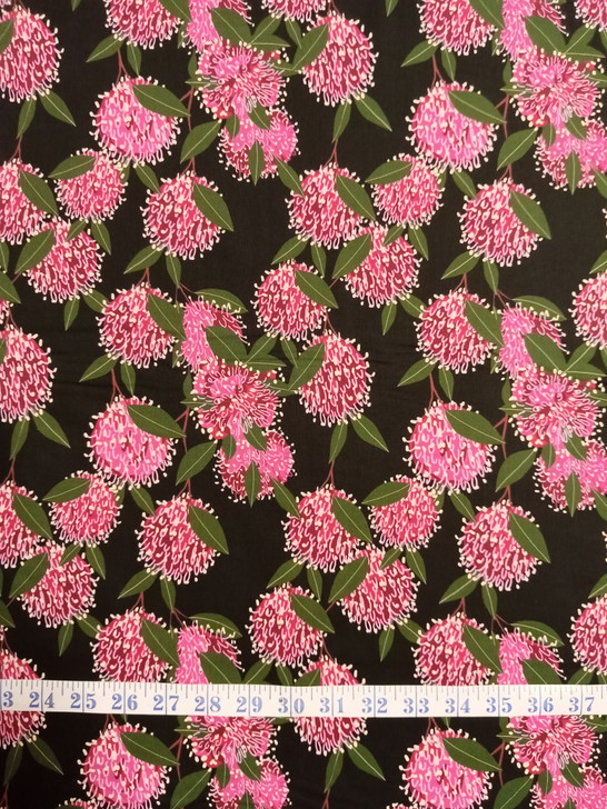 Australian Pink Flowering Banksia Black Background Robyn Hammond Cotton Quilting Fabric