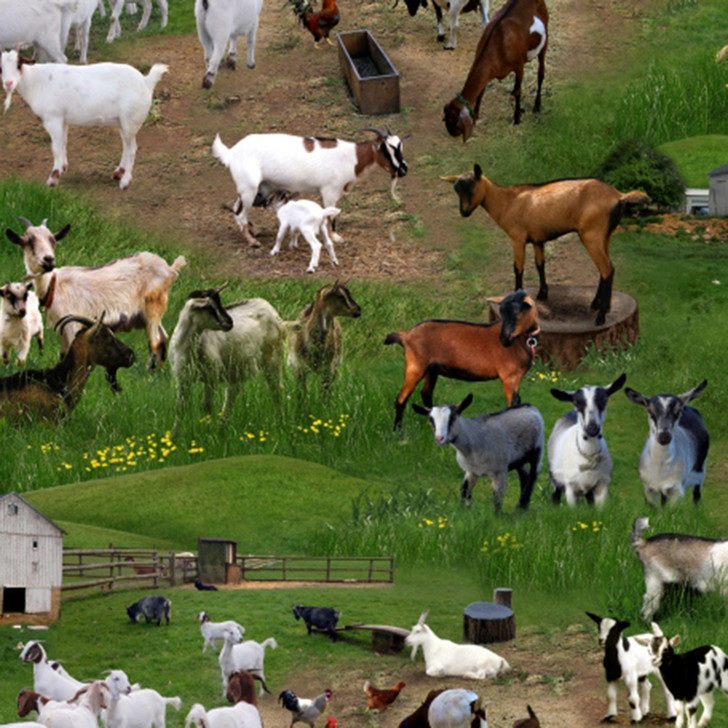 Farm Animals Goats Green Scenic Cotton Quilting Fabric