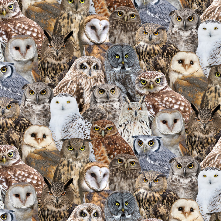 Owls Packed Multi Cotton Quilting Fabric