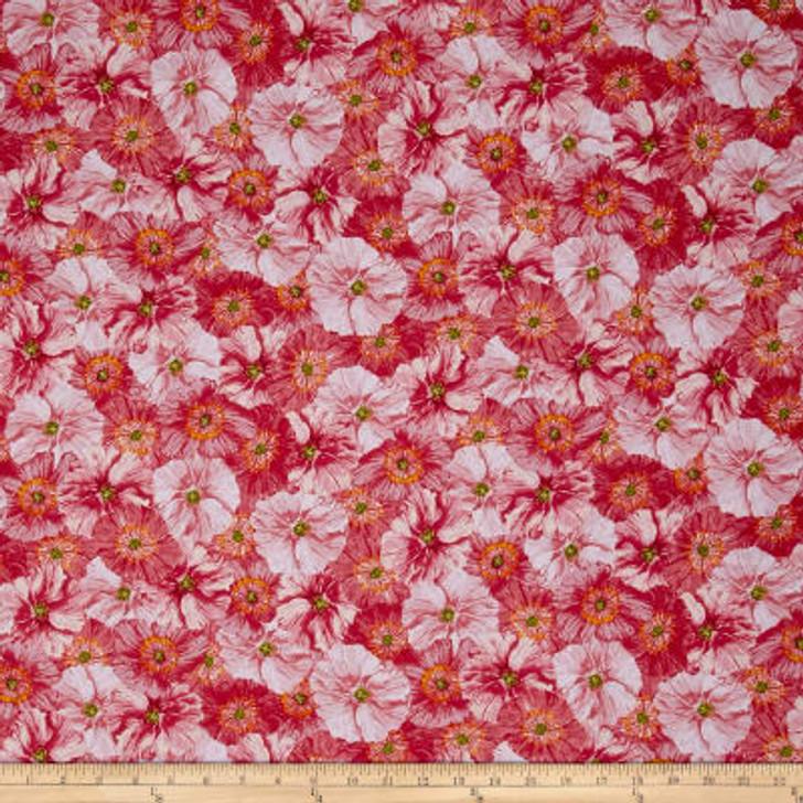 Poppy Garden Poppy Collage Raspberry Cotton Quilting Fabric 1/2 YARD
