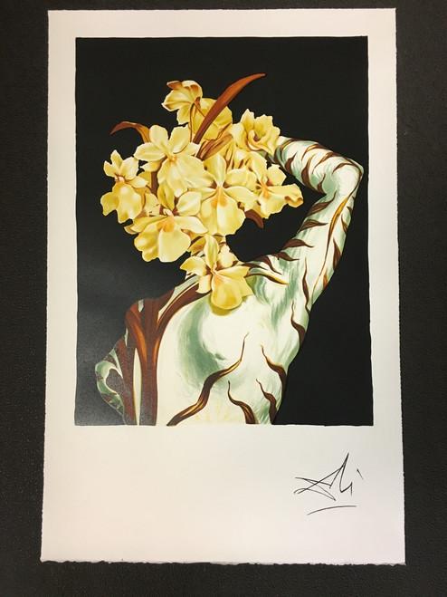 Surrealist Flower Fine Art Lithograph