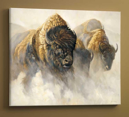 Phantom of the Plain Bison Gallery Wrapped Canvas by Grant Hacking