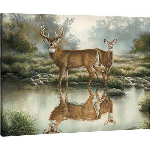 Tranquil Waters Whitetail Deer Gallery Wrapped Canvas by Rosemary Millette