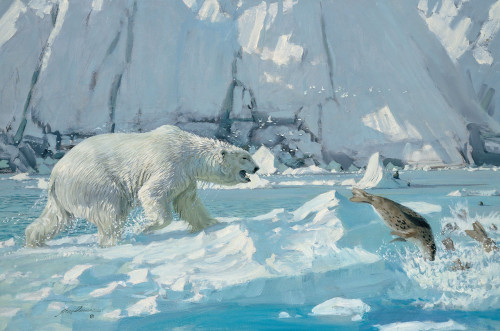 A Near Miss, Polar Bear Original Oil Painting by Jack Dumas