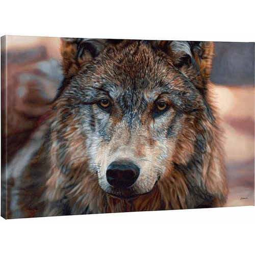 Northern Gaze Wolf Gallery Wrapped Canvas by John Aldrich