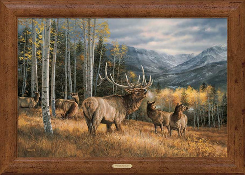 Meadow Music Elk Framed Gallery Canvas by Rosemary Millette