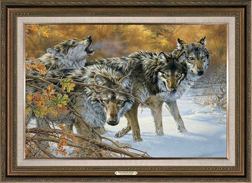 Body Language Wolves Framed Gallery Canvas by Lee Kromschroeder
