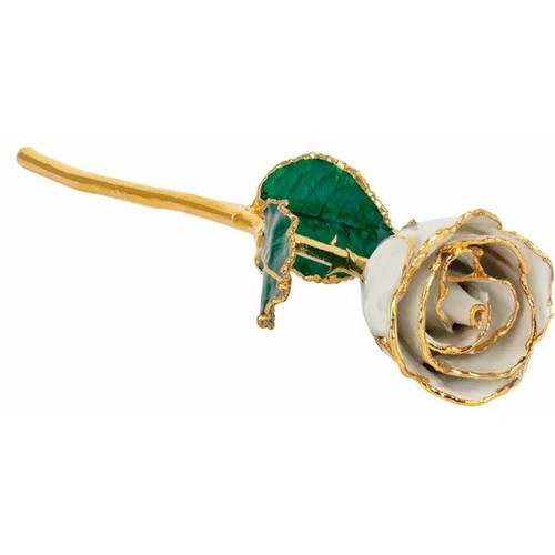 Lacquered 24K Gold Trimmed Pearl Coloured Rose