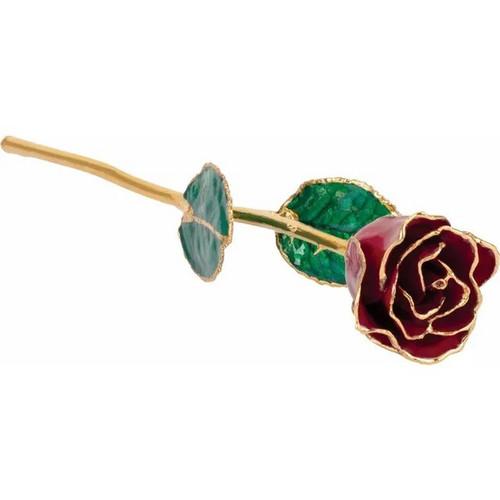 Lacquered 24k Gold Trimmed Garnet Coloured Rose