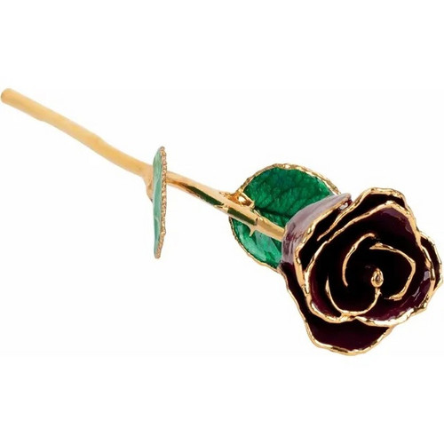 Lacquered 24k Gold Trimmed Burgundy Rose