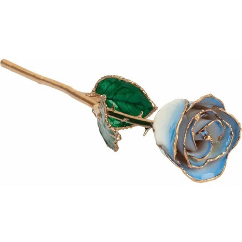 Lacquered 24k Gold Trimmed Cream Blue Rose