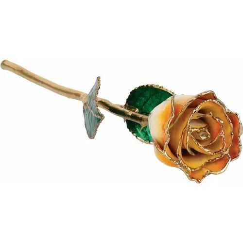Lacquered 24K Gold Trimmed Cream Orange Rose