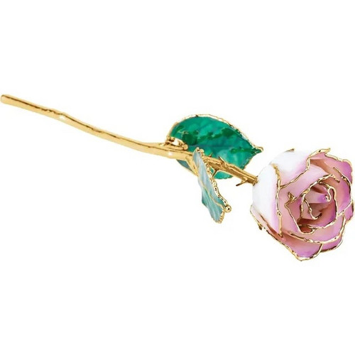 Lacquered 24k Gold Trimmed Cream Picasso Rose