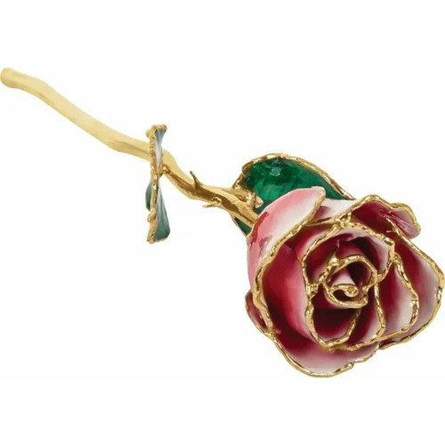 Lacquered 24k Gold Trimmed Frozen Red and White Rose