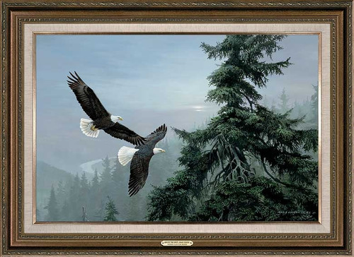 Above the Mist Bald Eagle Framed Gallery Canvas Art Print by Persis Clayton Weirs