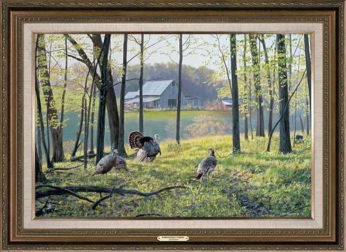 Homesteaders Wild Turkey Framed Gallery Canvas Art Print by Jim Kasper
