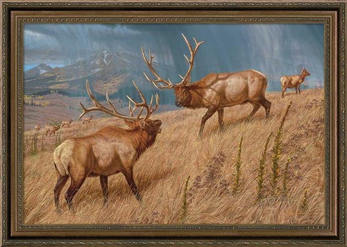 Storm Brewin' Elk Framed Gallery Art Print by Lee Kromschroeder