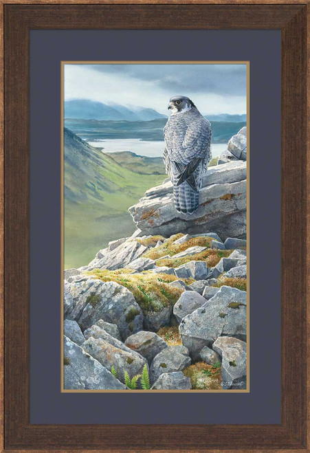 Sky King's Castle Peregrine Falcon Limited Edition Art Print on Paper by Susan Bourdet