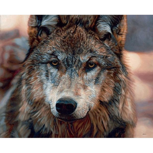 Northern Gaze Wolf Original Oil Painting by John Aldrich