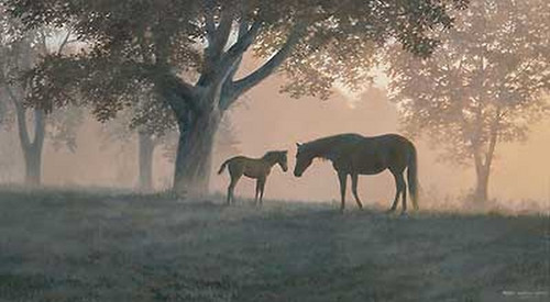 Unframed Dawns First Light - Horses Limited Edition Canvas