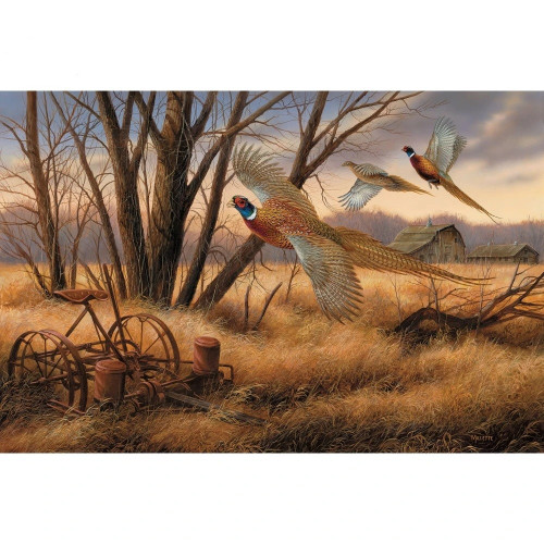 Prairie Wing - Pheasants Original Acrylic Painting by Rosemary Millette