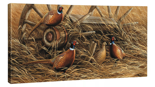 Rustic Retreat - Pheasants Gallery Wrapped Canvas by Rosemary Millette