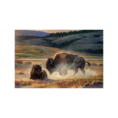 Eye of the Storm Limited Edition Giclée on Canvas by Nancy Glazier