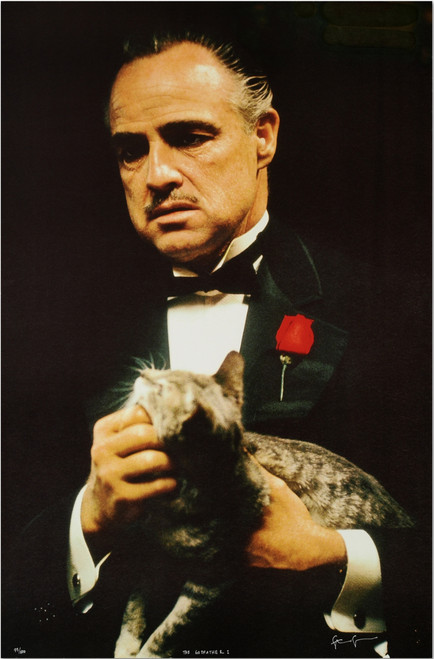The Godfather's Cat Lithograph  by Steve Schapiro