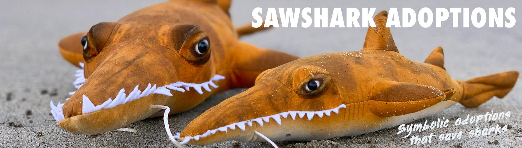 category-banner-adoptions-sawsharks-symbolic.jpg