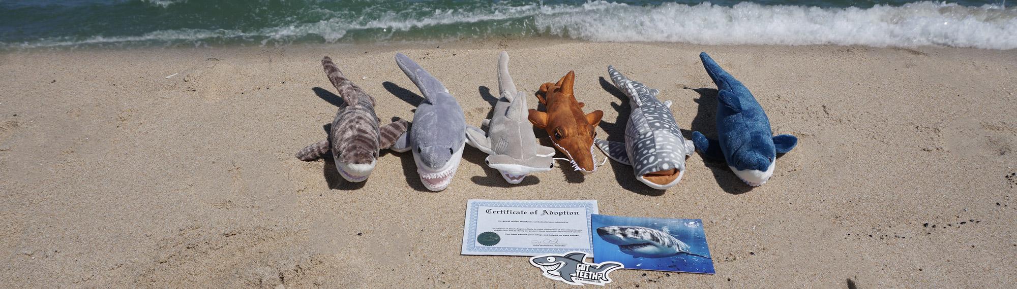 category-banner-shark-adoptions.jpg