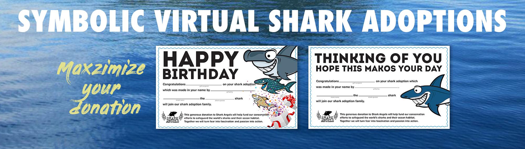 category-banner-virtual-shark-adoptions.jpg