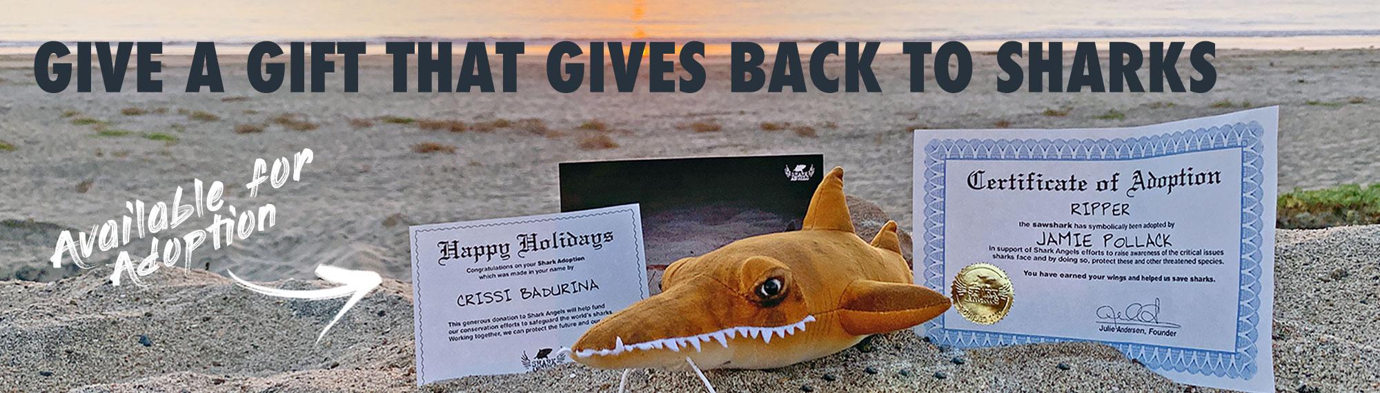 shark-adopt-category.jpg