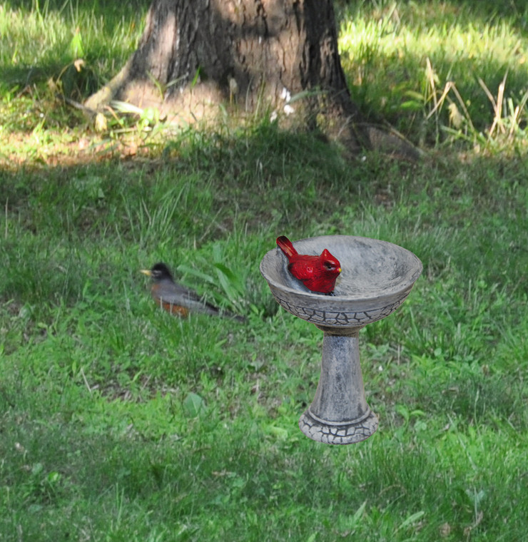 MiniGardenn 10027 Fairy Garden Miniature, Cardinal Birdbath Pick, Sold by each- 1 Piece