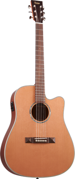 Tasman TA100-CE Seeker Series Acoustic/Electric Dreadnought with Case