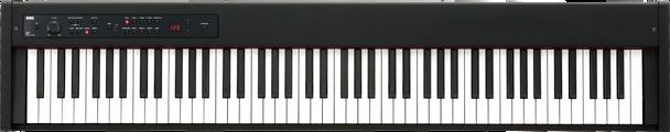 Korg D1 Digital Stage Piano with Gator Gig Bag