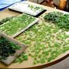 It can take many hours of sorting to find sea glass pieces that match in shape color and hue.