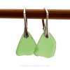 Green genuine sea glass pieces shaped only by the sea, sand and time are suspended on solid sterling leverback earrings.