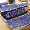 I can take hundreds upon hundreds of hours to find two blue sea glass pieces for earrings. It then is a process of matching size, thickness, color, hue and frost to make earring pairs like these.