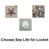 Choose Sea Life For Locket