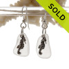 Smaller Genuine Unaltered White Sea Glass Earrings with Solid Sterling Seahorse Charms.