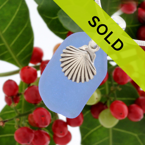 Medium Blue beach found sea glass combined with a solid sterling sea shell charm and presented on a solid Sterling silver snake chain.