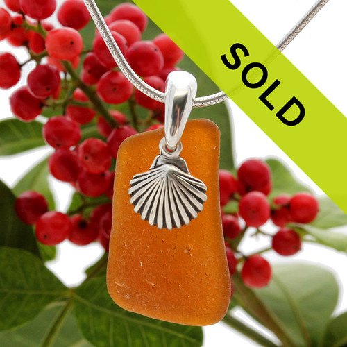 A simple but bright vivid amber brown beach found sea glass piece set on a solid sterling professionally hand cast bail and finished with a sterling silver sea shell charm!