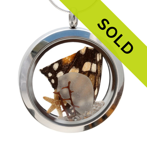 Genuine amber and white sea glass piece combined with a piece of Monarch butterfly wing, sea fan in this stainless steel locket necklace. Sorry this sea glass jewelry item has been sold!